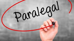 Paralegal Support